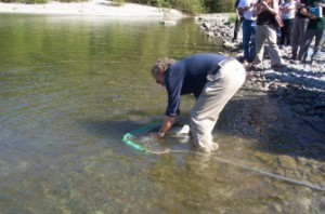 Followed by John Kelly (BC Hydro)