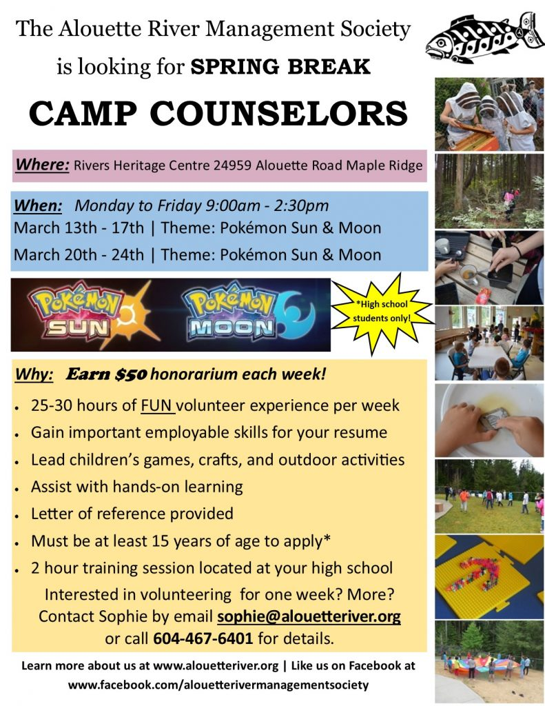 camp-counselor-flyer-2017