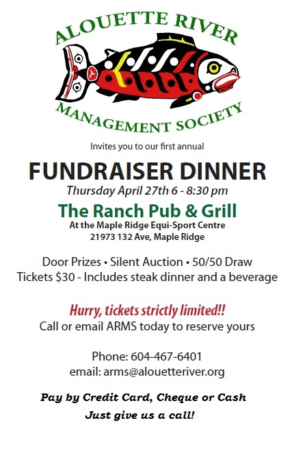 Fundraiser poster with Payment